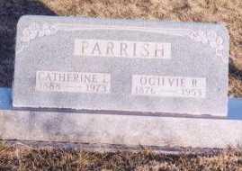 STEPHAN PARRISH, CATHERINE LENA - Knox County, Missouri | CATHERINE LENA STEPHAN PARRISH - Missouri Gravestone Photos