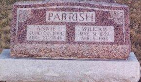 PARRISH, WILLIAM THOMAS - Knox County, Missouri | WILLIAM THOMAS PARRISH - Missouri Gravestone Photos