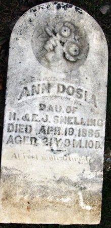 SNELLING, ANN DOSIA - Knox County, Missouri | ANN DOSIA SNELLING - Missouri Gravestone Photos