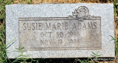 ADAMS, SUSIE MARIE - Lawrence County, Missouri | SUSIE MARIE ADAMS - Missouri Gravestone Photos