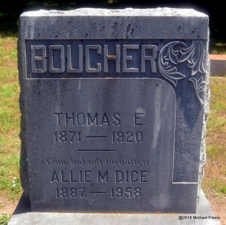 DICE BOUCHER, ALLIE M. - Lawrence County, Missouri | ALLIE M. DICE BOUCHER - Missouri Gravestone Photos