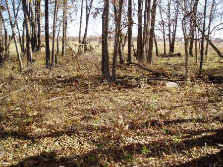 *BUTLER CEMETERY OVERVIEW, . - Lawrence County, Missouri   . *BUTLER CEMETERY OVERVIEW - Missouri Gravestone Photos