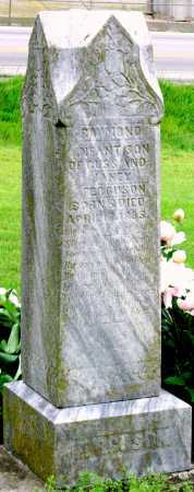 FERGUSON, RAYMOND - Lawrence County, Missouri   RAYMOND FERGUSON - Missouri Gravestone Photos