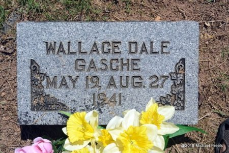 GASCHE, WALLACE DALE - Lawrence County, Missouri | WALLACE DALE GASCHE - Missouri Gravestone Photos