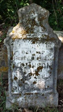 JOHNSON, ANNA ELISABETH - Lawrence County, Missouri | ANNA ELISABETH JOHNSON - Missouri Gravestone Photos