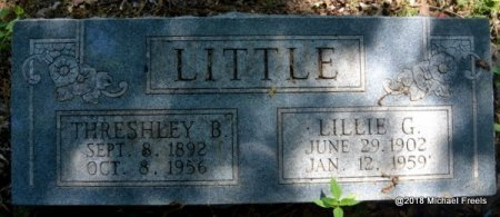 LITTLE, LILLIE G. - Lawrence County, Missouri | LILLIE G. LITTLE - Missouri Gravestone Photos