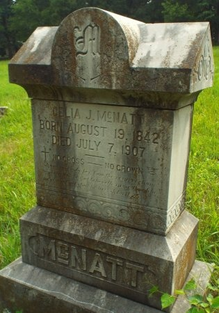 CUMMINGS MCNATT, CELIA JEMIMA - Lawrence County, Missouri   CELIA JEMIMA CUMMINGS MCNATT - Missouri Gravestone Photos