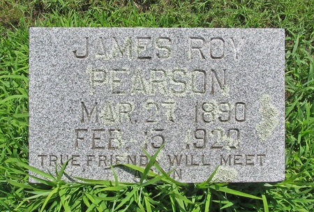 PEARSON, JAMES ROY DR (D.V.M.) - Lawrence County, Missouri   JAMES ROY DR (D.V.M.) PEARSON - Missouri Gravestone Photos