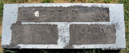 REID, ALBERTA - Lawrence County, Missouri | ALBERTA REID - Missouri Gravestone Photos