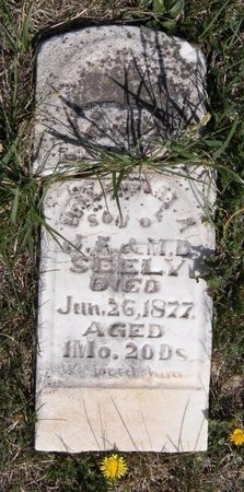SEELY, WILLIAM M - Lawrence County, Missouri | WILLIAM M SEELY - Missouri Gravestone Photos