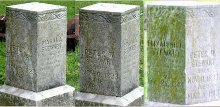 STEWART, PETER W - Lawrence County, Missouri | PETER W STEWART - Missouri Gravestone Photos