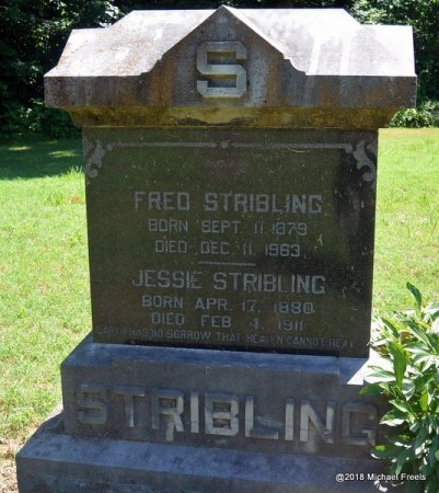 STRIBLING, JESSIE - Lawrence County, Missouri | JESSIE STRIBLING - Missouri Gravestone Photos