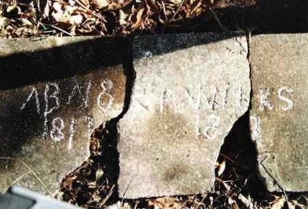 WILKS, ABNER P. - Lawrence County, Missouri | ABNER P. WILKS - Missouri Gravestone Photos