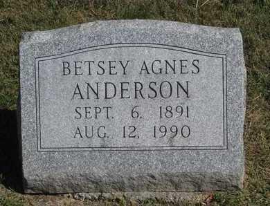 ANDERSON, BETSEY AGNES - Linn County, Missouri | BETSEY AGNES ANDERSON - Missouri Gravestone Photos