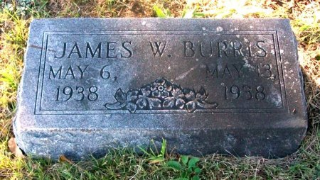 BURRIS, JAMES WILLIAM - Macon County, Missouri | JAMES WILLIAM BURRIS - Missouri Gravestone Photos