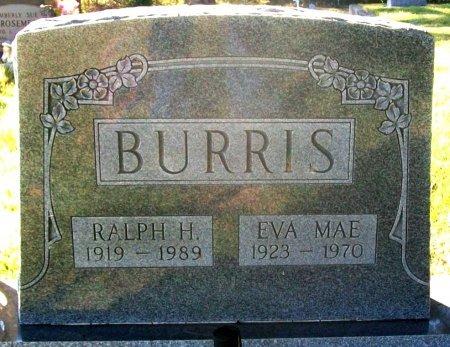 HOLT BURRIS, EVA MAE - Macon County, Missouri | EVA MAE HOLT BURRIS - Missouri Gravestone Photos
