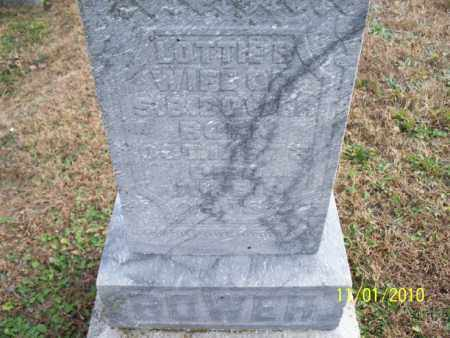 BOWER, LOTTIE B. - Marion County, Missouri | LOTTIE B. BOWER - Missouri Gravestone Photos