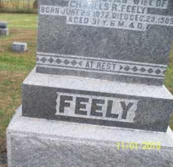 FEELY, LIZZIE - Marion County, Missouri   LIZZIE FEELY - Missouri Gravestone Photos