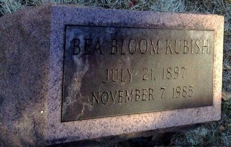 BLOOM KUBISH, BEA - Marion County, Missouri   BEA BLOOM KUBISH - Missouri Gravestone Photos