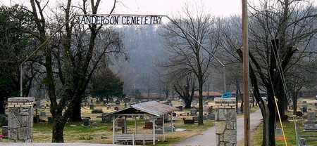*, ANDERSON CEMETERY - McDonald County, Missouri | ANDERSON CEMETERY * - Missouri Gravestone Photos