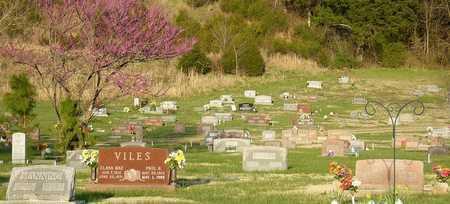 *, CEMETERY OVER VIEW - McDonald County, Missouri | CEMETERY OVER VIEW * - Missouri Gravestone Photos