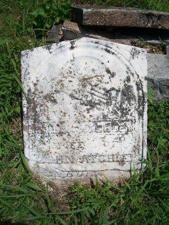 ATCHEE, ELLE - McDonald County, Missouri   ELLE ATCHEE - Missouri Gravestone Photos