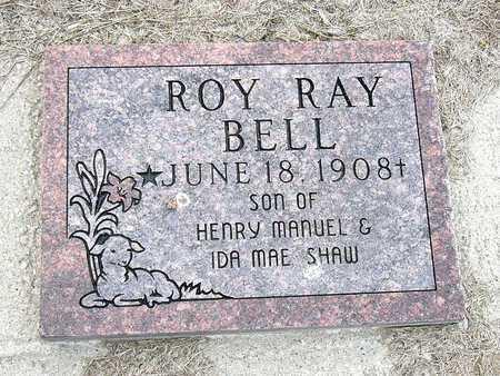 BELL, ROY RAY - McDonald County, Missouri | ROY RAY BELL - Missouri Gravestone Photos