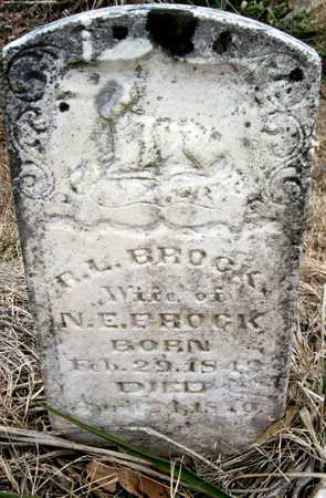BROCK, RHODA LEVINA - McDonald County, Missouri | RHODA LEVINA BROCK - Missouri Gravestone Photos