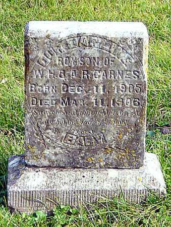 CARNES, ROY - McDonald County, Missouri | ROY CARNES - Missouri Gravestone Photos