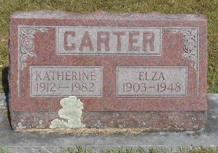 CARTER, ELZA - McDonald County, Missouri   ELZA CARTER - Missouri Gravestone Photos