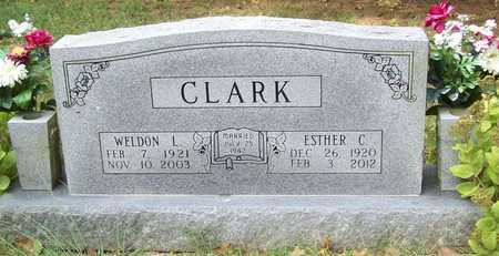 CLARK, WELDON L - McDonald County, Missouri | WELDON L CLARK - Missouri Gravestone Photos