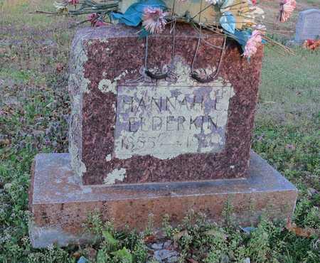ELDERKIN, HANNAH - McDonald County, Missouri | HANNAH ELDERKIN - Missouri Gravestone Photos