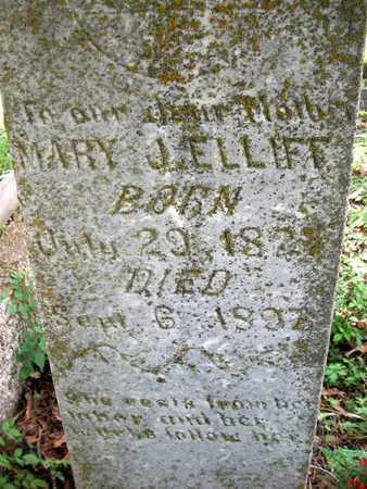 ELLIFF, MARY JAMES - McDonald County, Missouri   MARY JAMES ELLIFF - Missouri Gravestone Photos