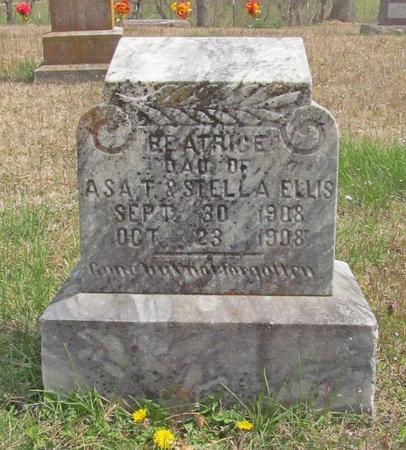ELLIS, BEATRICE - McDonald County, Missouri   BEATRICE ELLIS - Missouri Gravestone Photos