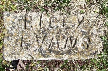 EVANS, RILEY - McDonald County, Missouri | RILEY EVANS - Missouri Gravestone Photos