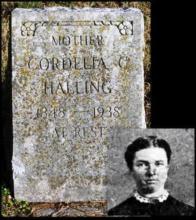 HALLING, CORDELIA CATHERINE - McDonald County, Missouri | CORDELIA CATHERINE HALLING - Missouri Gravestone Photos