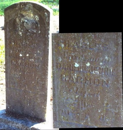 HARMON, CHARLES - McDonald County, Missouri   CHARLES HARMON - Missouri Gravestone Photos