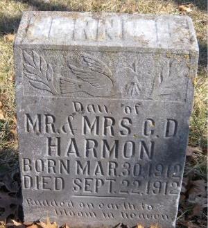 HARMON, FERN WEBSTER - McDonald County, Missouri | FERN WEBSTER HARMON - Missouri Gravestone Photos