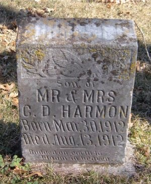 HARMON, INFANT SON - McDonald County, Missouri | INFANT SON HARMON - Missouri Gravestone Photos