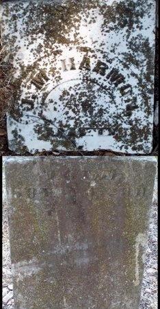 HARMON, JOHN MARK - McDonald County, Missouri | JOHN MARK HARMON - Missouri Gravestone Photos