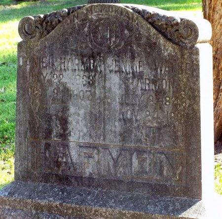 HARMON, NANCY VIRGINIA JANE - McDonald County, Missouri | NANCY VIRGINIA JANE HARMON - Missouri Gravestone Photos