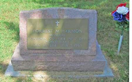 HARMON, FORREST M VETERAN WWI - McDonald County, Missouri   FORREST M VETERAN WWI HARMON - Missouri Gravestone Photos