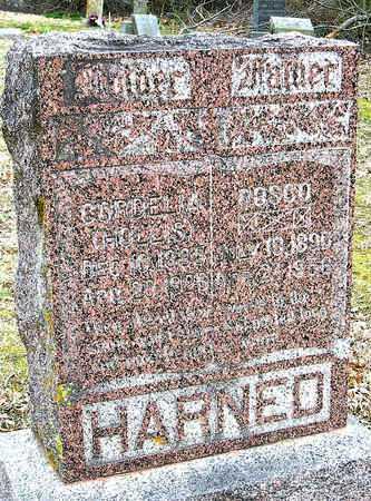 HOLLIS HARNED, CORDELIA - McDonald County, Missouri | CORDELIA HOLLIS HARNED - Missouri Gravestone Photos