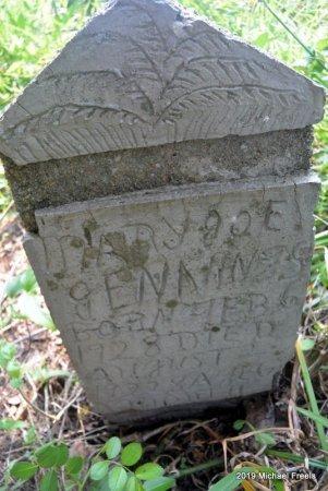 JENNINGS, MARY JOE - McDonald County, Missouri   MARY JOE JENNINGS - Missouri Gravestone Photos