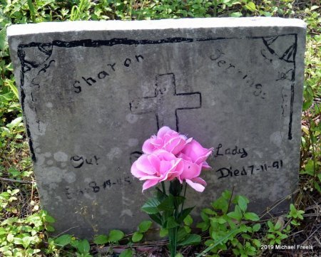 JENNINGS, SHARON KAY - McDonald County, Missouri   SHARON KAY JENNINGS - Missouri Gravestone Photos