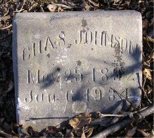 JOHNSON, CHARLES S. - McDonald County, Missouri | CHARLES S. JOHNSON - Missouri Gravestone Photos