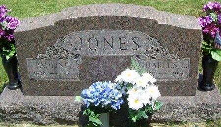 JONES, CHARLES LEROY - McDonald County, Missouri | CHARLES LEROY JONES - Missouri Gravestone Photos