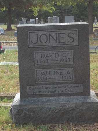 JONES, DAVID C. - McDonald County, Missouri | DAVID C. JONES - Missouri Gravestone Photos