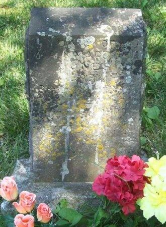 JONES, DAUGHTER - McDonald County, Missouri | DAUGHTER JONES - Missouri Gravestone Photos