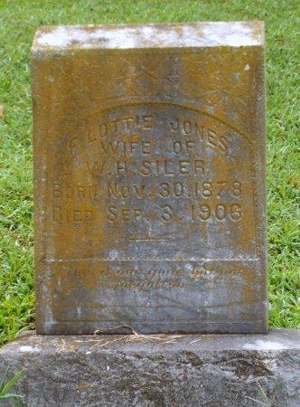 JONES, F. LOTTIE - McDonald County, Missouri   F. LOTTIE JONES - Missouri Gravestone Photos